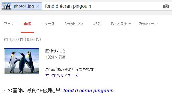 ペンギン写真での検索結果1